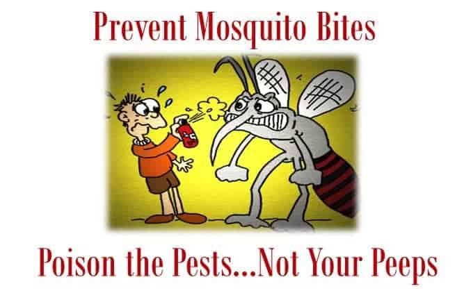 Prevent Mosquito Bites JS